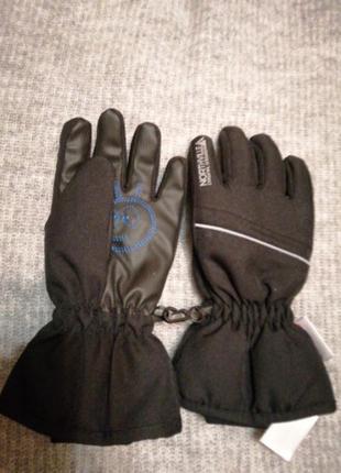 Перчатки лыжные