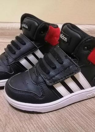 Хайтопы кроссовки adidas оригинал