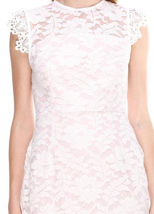 Нежное кружевное платье asos