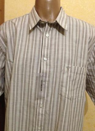 Хлопковая рубашка в полоску с коротким рукавом-james  pringle