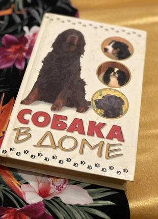 Книга собака в доме
