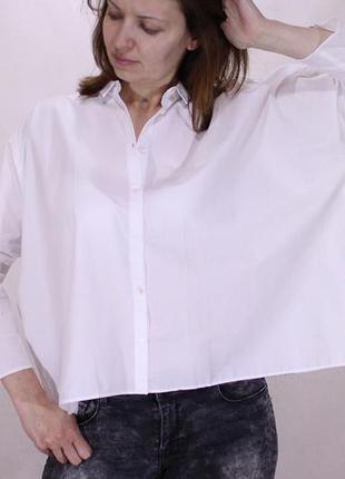 Рубашка белая mango  укороченная