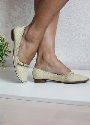 Италийские кожаные туфли балетки, натуральная кожа под змеиную