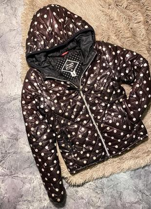 Курточка дутик1 фото
