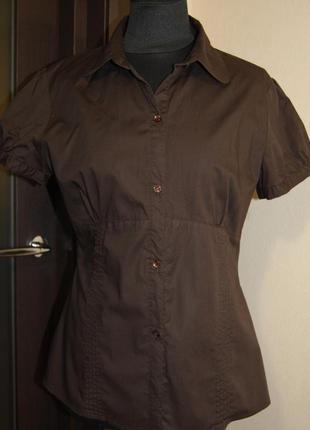 Коричневая блуза motivi с коротким рукавом