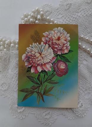 Пионы открытка ссср советская цветы коллекционная винтаж