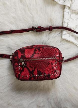 Кожаная красная поясная сумка на пояс с черным змеиным принтом рептилии на талию