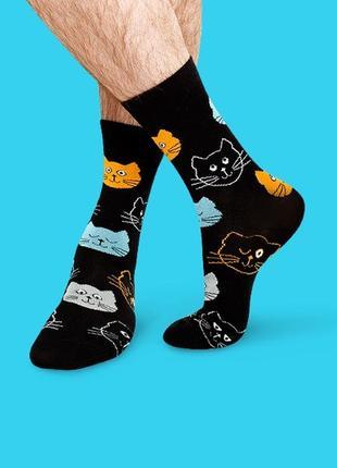 Шкарпетки котики