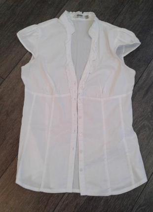Белая хлопковая блуза  / рубашка