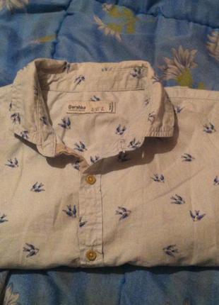Рубашка bershka - стильная, красивая, практичная.