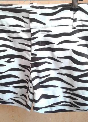 Шорты принт зебра