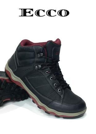 Кожаные женские ботинки ecco hidromax оригинал