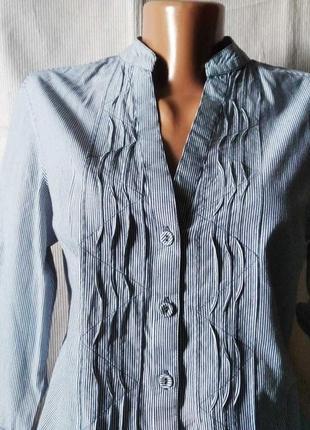 Сорочка блуза смуга полоска