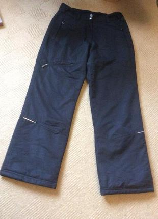 Лыжные теплые штаны catmandoo  р.36,38
