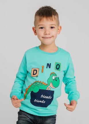 Реглан микроначес, дино,  5-6 лет