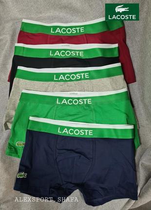 Трусы набор 5шт lacoste мужские шортики на широкой резинке