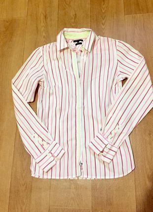 Женская хлопковая рубашка tommy hilfiger
