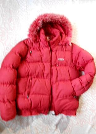 Теплющая курточка с капюшоном на размер 50-52/xl-xxl