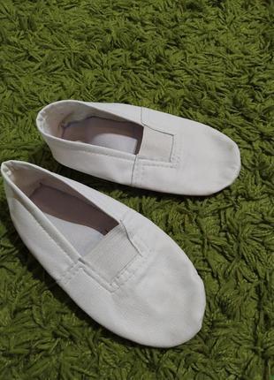 Балетки чешки обувь для танцев