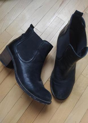 Стильні чобітки