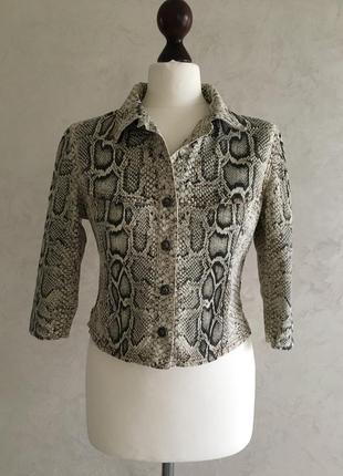 Брендовый жакет укороченный пиджак куртка roberto cavalli 100% оригинал змеиный принт