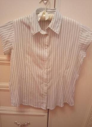 Блуза-рубашка atmosphere