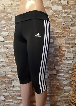 Немецкие, эластиковые, женские лосины, легисины, бриджи спортивного стиля