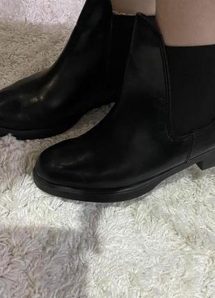 Кожаные чёрные демисезонные кожаные ботинки челси на резинках  бренд campus
