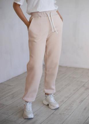 Зимние спортивные штаны на флисе 4 цвета