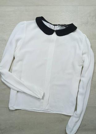 Блузы с белым воротничком