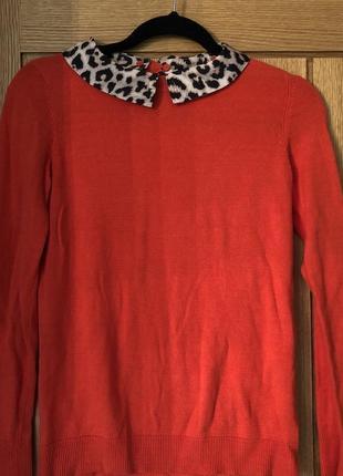 Свитшот с леопардовый воротником