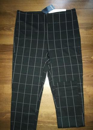 Легінси брюки штани