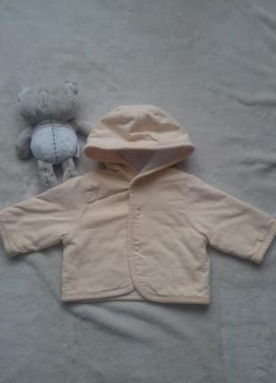 Реглан с капюшоном утепленный пайта куртка весенняя