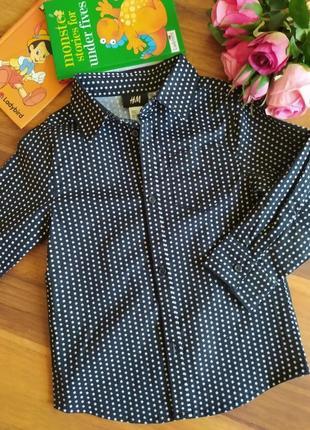 Ультромодная стильная рубашка h&m на 2-3 года.