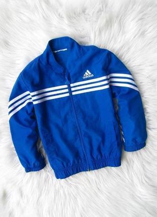 Стильная спортивная кофта реглан куртка бомбер adidas