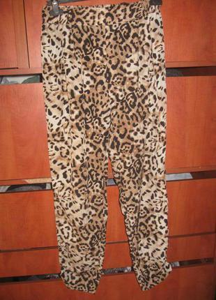 Штаны бананы леопард