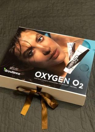 Набор красок для бровей oxygen o2 browxenna
