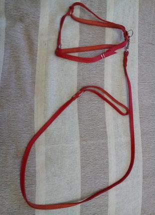 Красный кожанный поводок новый  123см