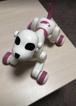 Собака робот toby с пультом
