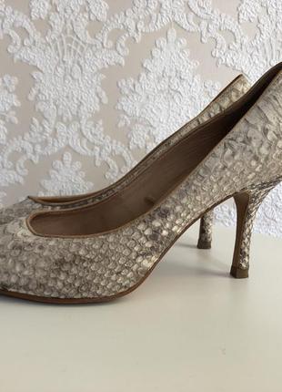 Классические туфли из кожи питона zara