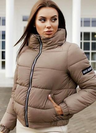 Куртка, зима,осінь,пуховик 🌈😍