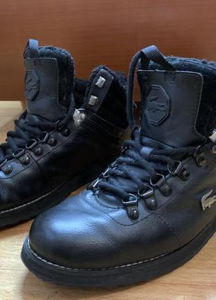 Зимние кожаные ботинки lacoste (original)