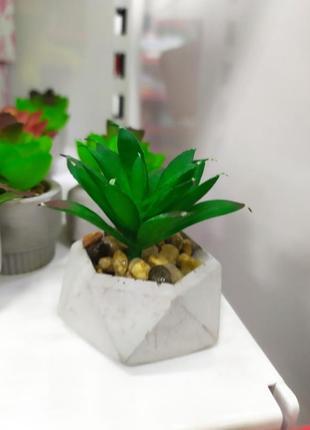 Рослина декоративна штучна