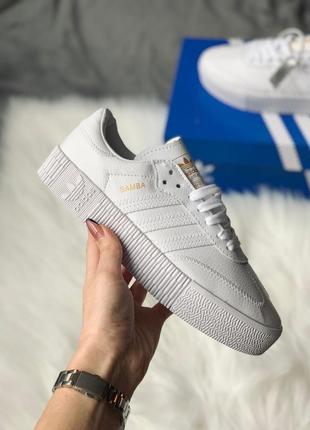 Женские шикарные кросы adidas