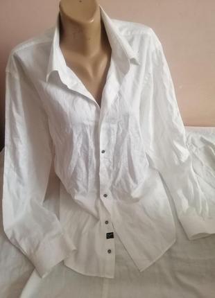 Шикарна рубашка