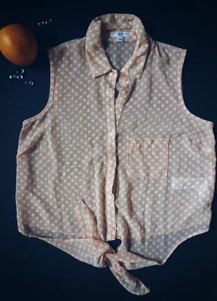 Блузка шифоновая в горошек купить в интернет магазине