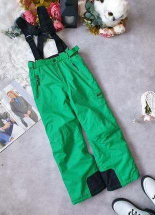 Горнолыжные штаны горнолыжка
