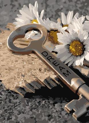 Картина по номерам 40*50 «открой мечту»