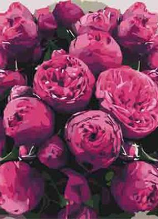 Картина по номерам 40*50 цветы пионы
