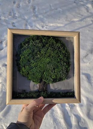 """Картина """"дерево"""" со скандинавским мхом"""